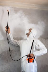 pest-control-guy-fumigating-the-kitchen